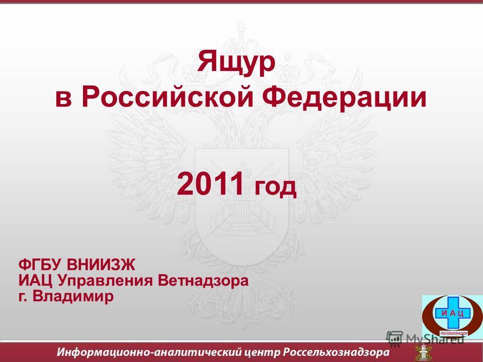 Ящур в Российской Федерации 2011 год ФГБУ ВНИИЗЖ ИАЦ Управления Ветнадзора г. Владимир