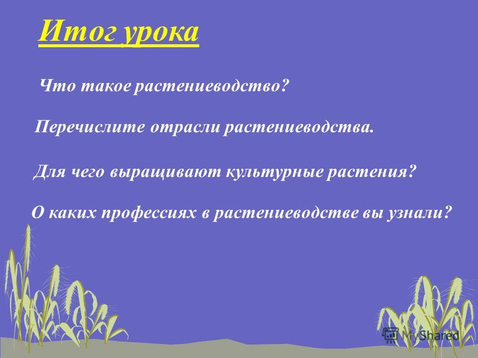 Итог урока Что такое растениеводство? Перечислите отрасли растениеводства. Для чего выращивают культурные растения? О каких профессиях в растениеводстве вы узнали?