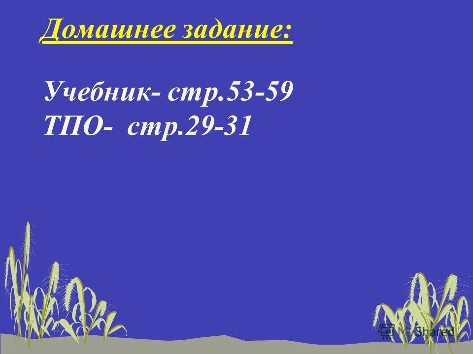 Домашнее задание: Учебник- стр.53-59 ТПО- стр.29-31
