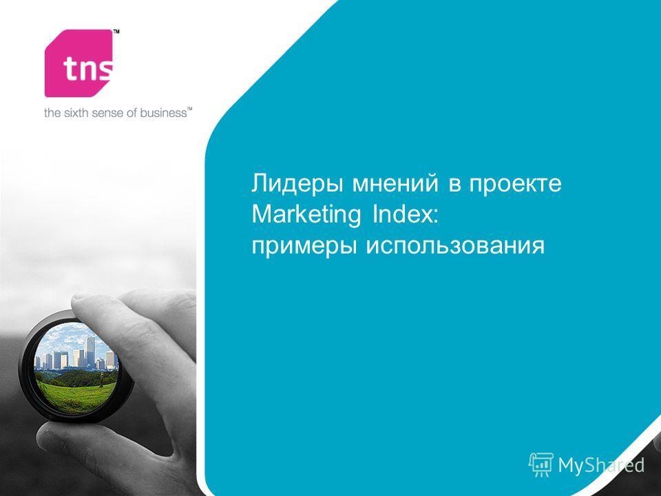 Лидеры мнений в проекте Marketing Index: примеры использования