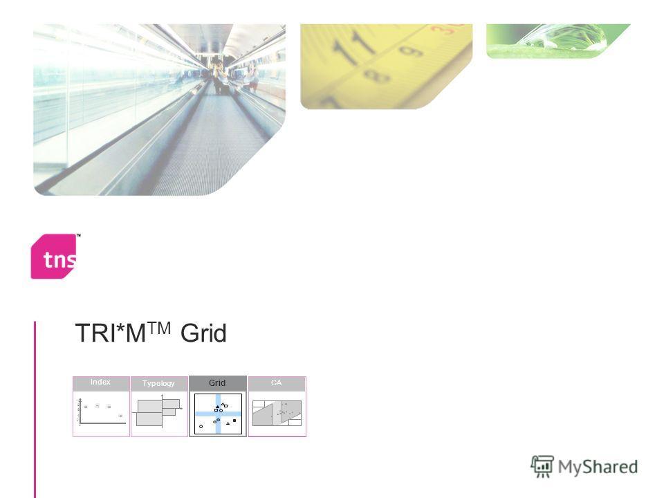 TRI*M TM Grid Grid Typology Index 30 68 70 65 0 20 40 60 80 100 CA