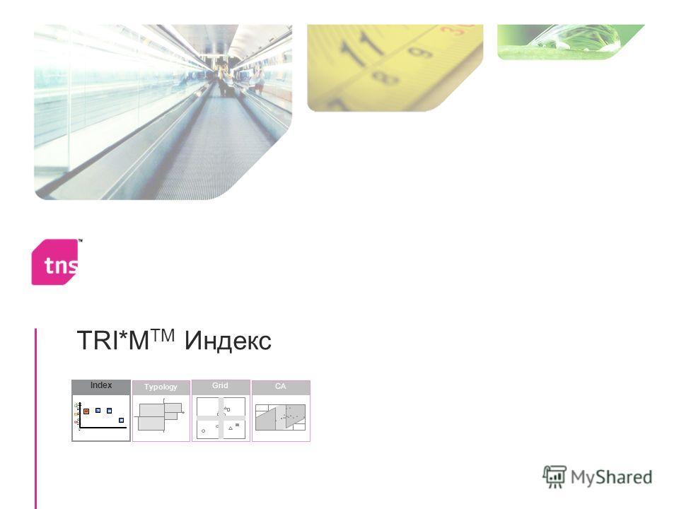 TRI*M TM Индекс Index 30 68 70 65 0 20 40 60 80 100 Typology CA Grid