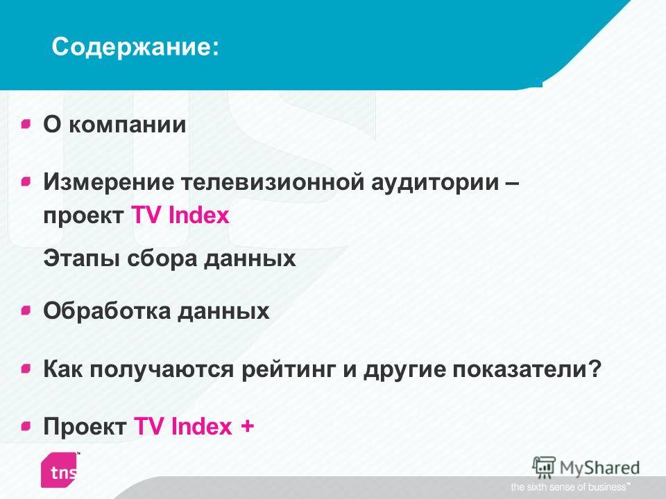 Содержание: О компании Измерение телевизионной аудитории – проект TV Index Этапы сбора данных Обработка данных Как получаются рейтинг и другие показатели? Проект TV Index +