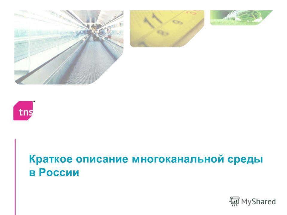 Краткое описание многоканальной среды в России