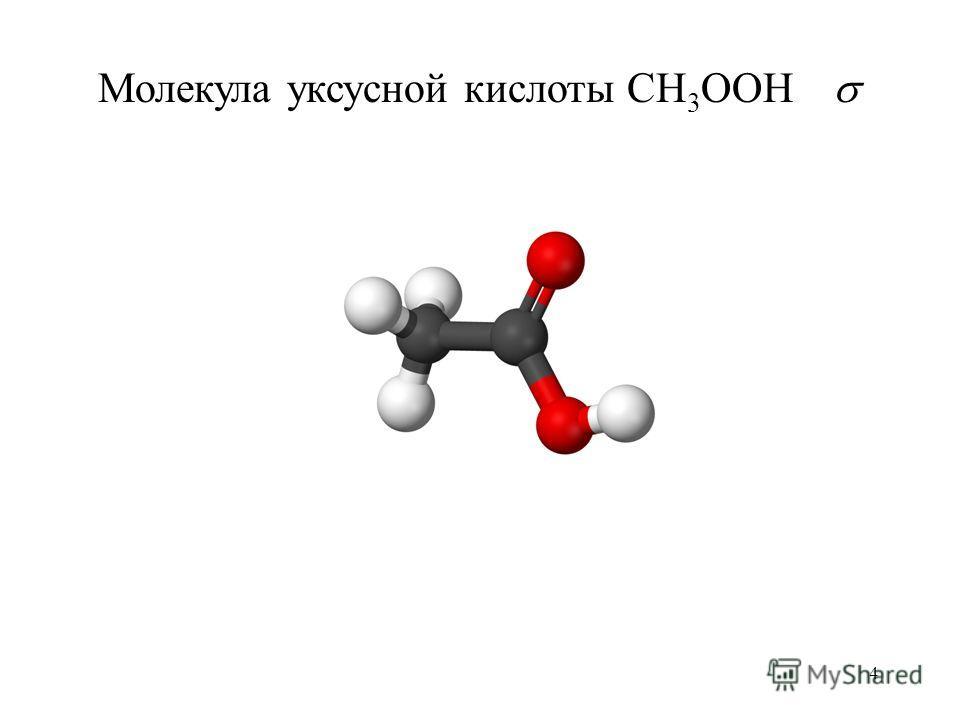 4 Молекула уксусной кислоты CH 3 OOH
