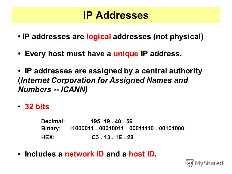 IP Addresses IP addresses are logical addresses (not physical) Every host must have a unique IP address. IP addresses are assigned by a central authority (Internet Corporation for Assigned Names and Numbers -- ICANN) 32 bits Decimal: 195. 19. 40. 56