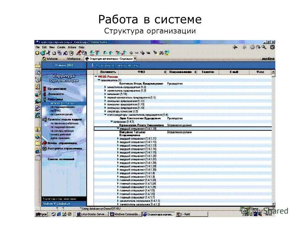 Работа в системе Структура организации