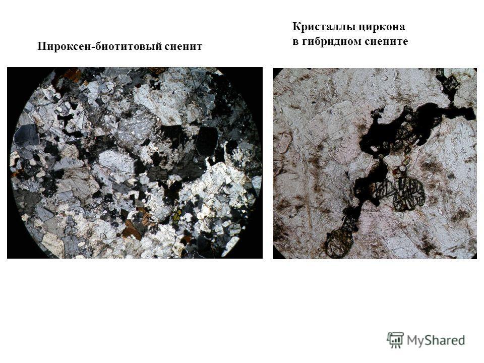 Пироксен-биотитовый сиенит Кристаллы циркона в гибридном сиените
