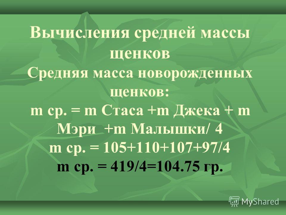 Вычисления средней массы щенков Средняя масса новорожденных щенков: m ср. = m Стаса +m Джека + m Мэри +m Малышки/ 4 m ср. = 105+110+107+97/4 m ср. = 419/4=104.75 гр.