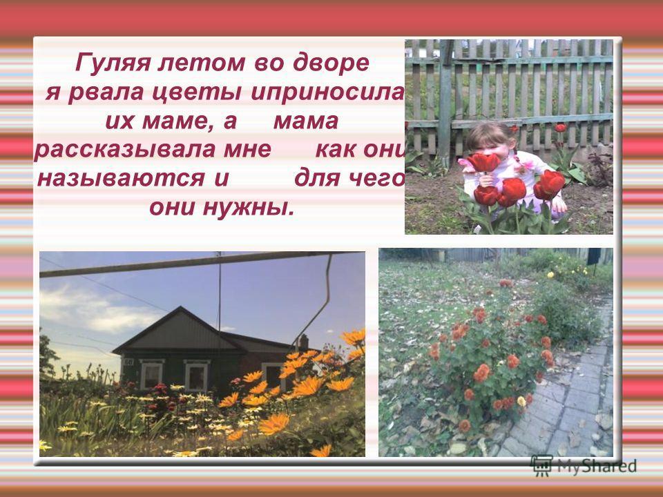 Гуляя летом во дворе я рвала цветы иприносила их маме, а мама рассказывала мне как они называются и для чего они нужны.