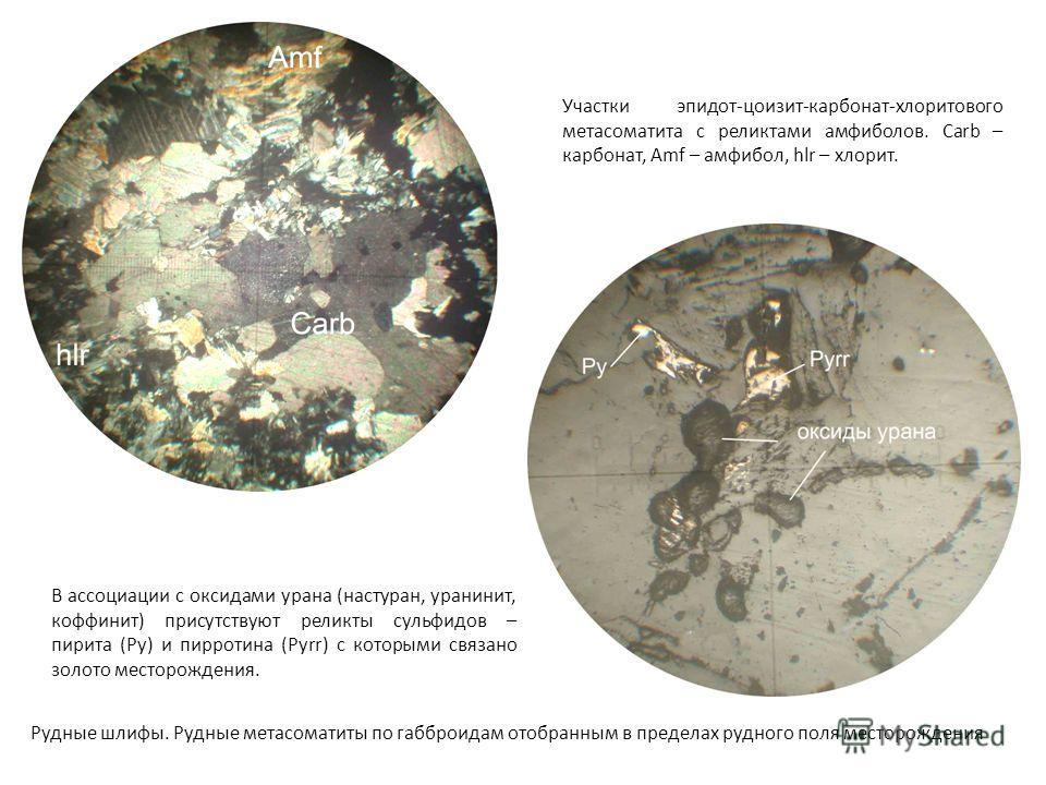 Участки эпидот-цоизит-карбонат-хлоритового метасоматита с реликтами амфиболов. Carb – карбонат, Amf – амфибол, hlr – хлорит. В ассоциации с оксидами урана (настуран, уранинит, коффинит) присутствуют реликты сульфидов – пирита (Py) и пирротина (Pyrr)