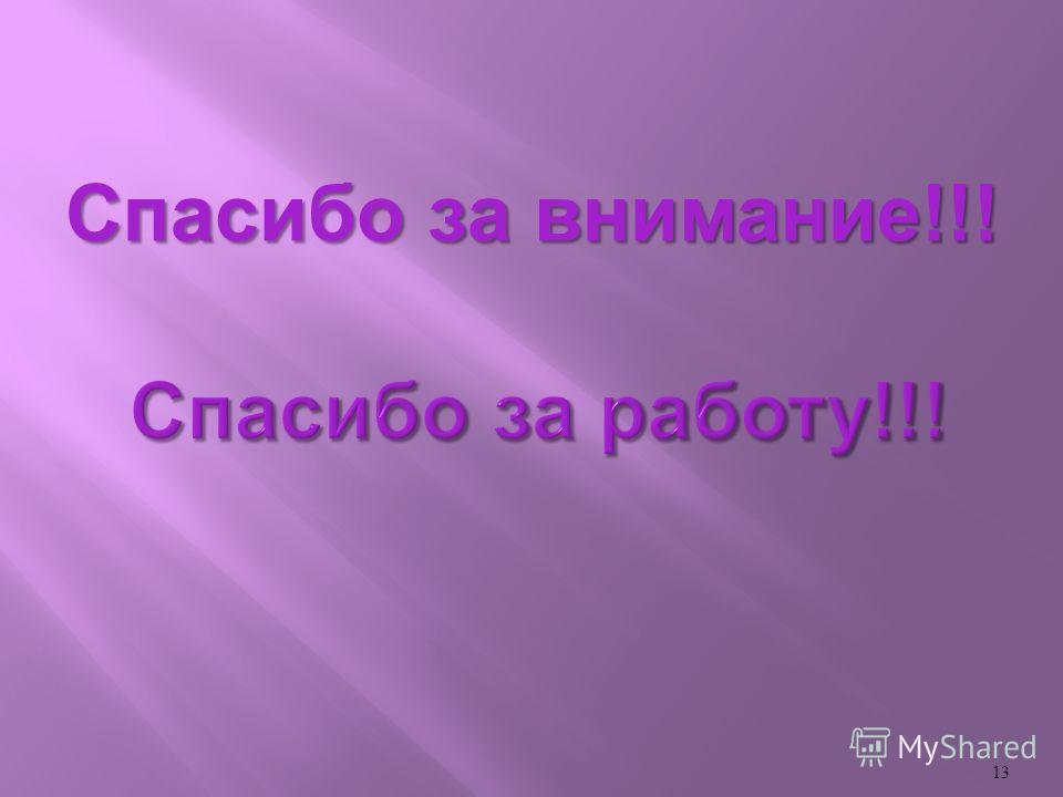 13 Спасибо за внимание !!!
