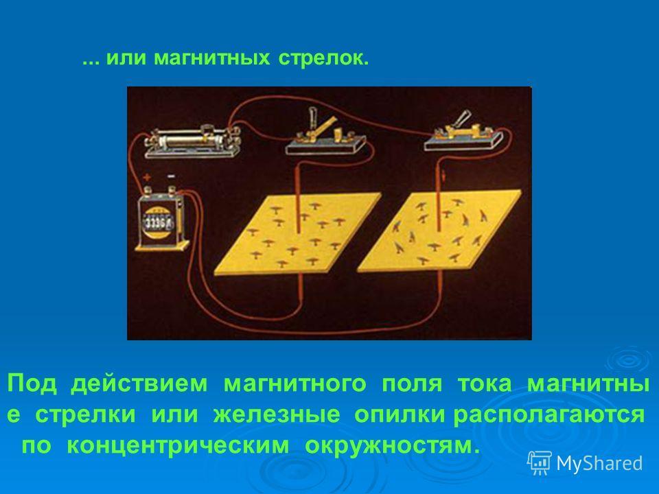 ... или магнитных стрелок. Под действием магнитного поля тока магнитны е стрелки или железные опилки располагаются по концентрическим окружностям.