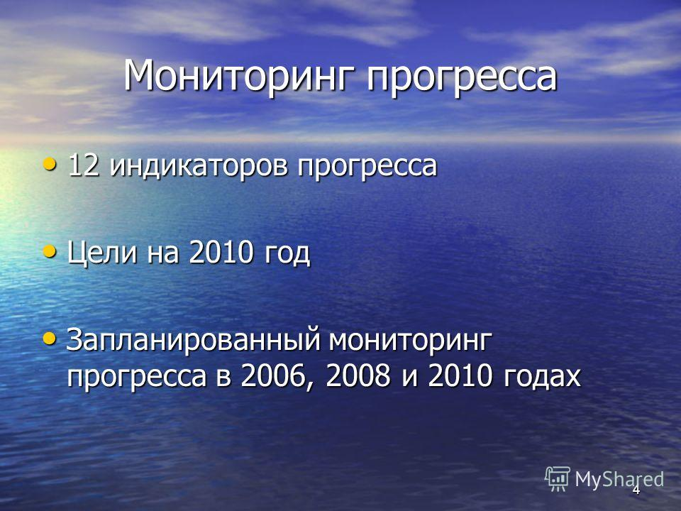 Мониторинг прогресса 12 индикаторов прогресса 12 индикаторов прогресса Цели на 2010 год Цели на 2010 год Запланированный мониторинг прогресса в 2006, 2008 и 2010 годах Запланированный мониторинг прогресса в 2006, 2008 и 2010 годах 4
