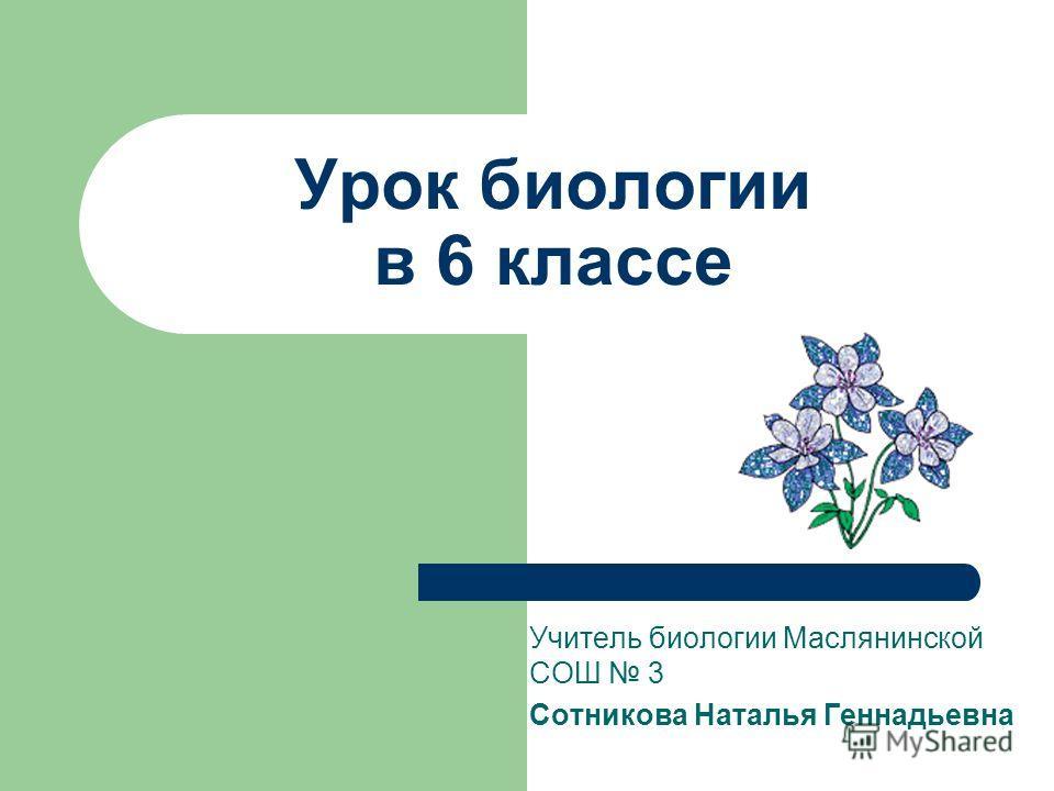 Учитель биологии Маслянинской СОШ 3 Сотникова Наталья Геннадьевна Урок биологии в 6 классе