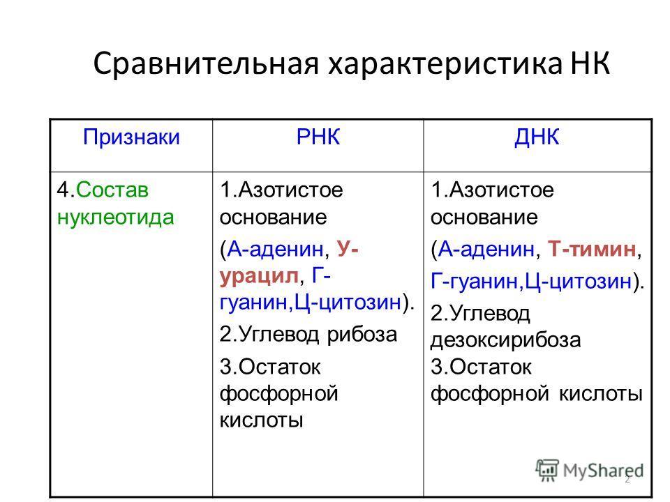 2 Сравнительная характеристика НК ПризнакиРНКДНК 4.Состав нуклеотида 1.Азотистое основание (А-аденин, У- урацил, Г- гуанин,Ц-цитозин). 2.Углевод рибоза 3.Остаток фосфорной кислоты 1.Азотистое основание (А-аденин, Т-тимин, Г-гуанин,Ц-цитозин). 2.Углев