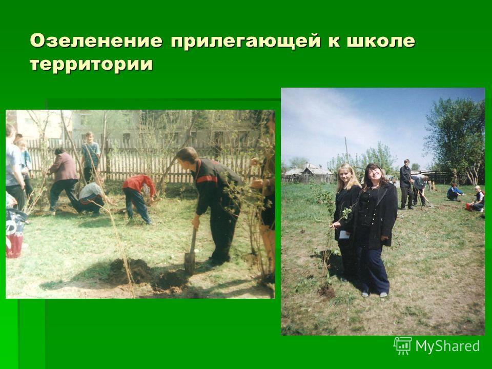 Озеленение прилегающей к школе территории