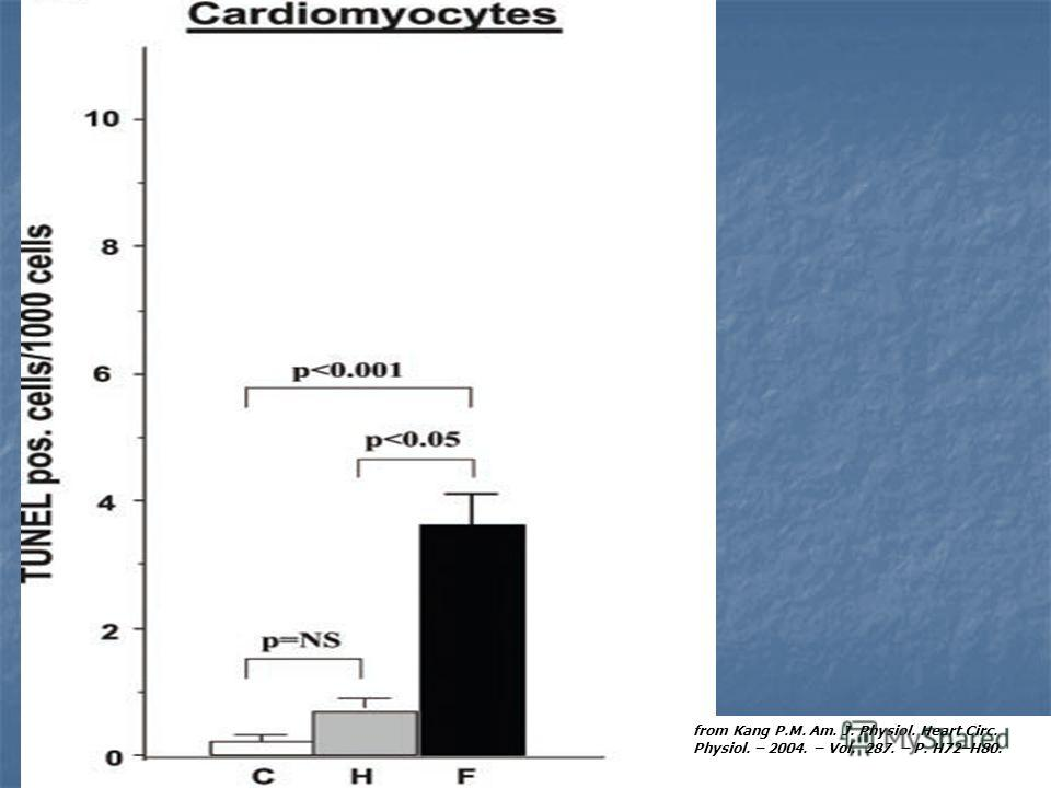 from Kang P.M. Am. J. Physiol. Heart Circ. Physiol. – 2004. – Vol. 287. – P. H72–H80.