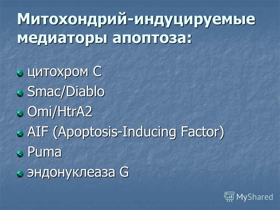 Митохондрий-индуцируемые медиаторы апоптоза: цитохром С Smac/Diablo Omi/HtrA2 AIF (Apoptosis-Inducing Factor) Puma эндонуклеаза G
