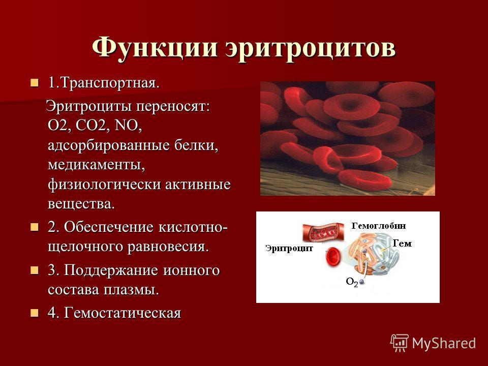 Функции эритроцитов 1.Транспортная. 1.Транспортная. Эритроциты переносят: О2, СО2, NO, адсорбированные белки, медикаменты, физиологически активные вещества. Эритроциты переносят: О2, СО2, NO, адсорбированные белки, медикаменты, физиологически активны