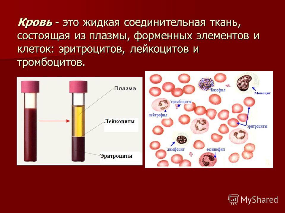 Кровь - это жидкая соединительная ткань, состоящая из плазмы, форменных элементов и клеток: эритроцитов, лейкоцитов и тромбоцитов.
