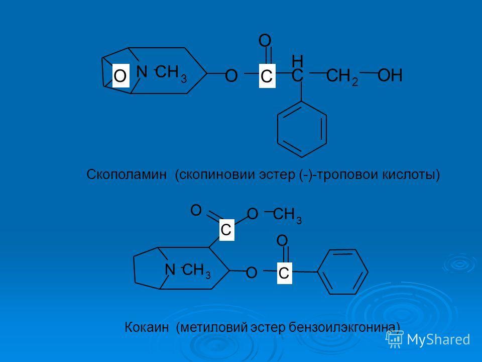 NCH 3 O C H CH 2 OH O Скополамин (скопиновии эстер (-)-троповои кислоты) C O NCH 3 O O O OCH 3 Кокаин (метиловий эстер бензоилэкгонина) C C