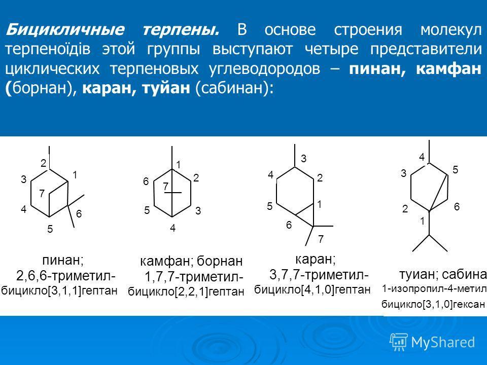 Бицикличные терпены. В основе строения молекул терпеноїдів этой группы выступают четыре представители циклических терпеновых углеводородов – пинан, камфан (борнан), каран, туйан (сабинан):
