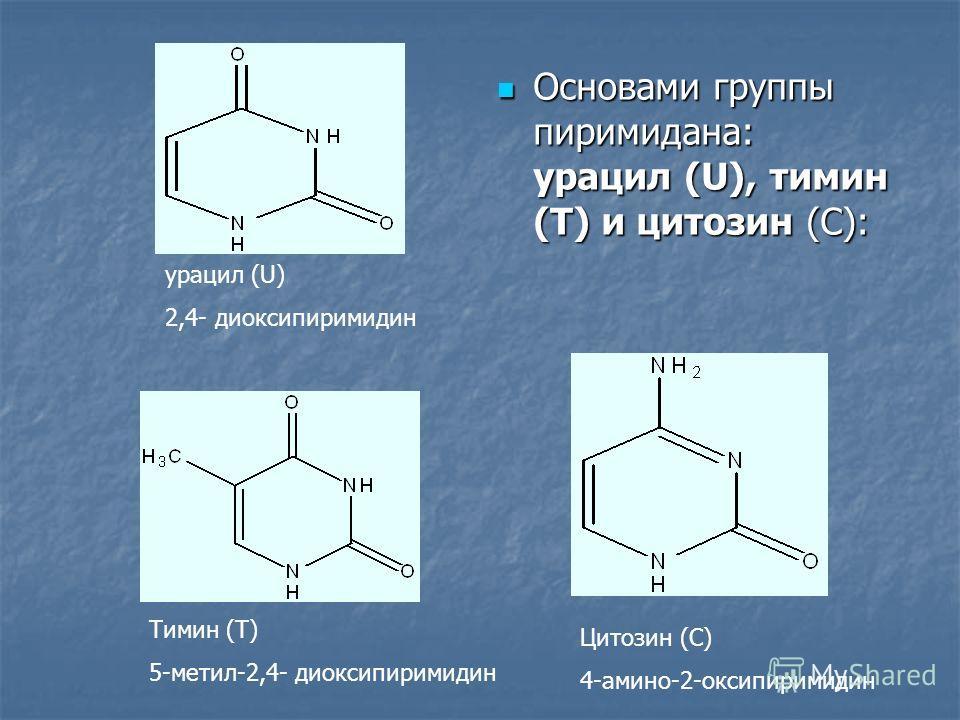 Основами группы пиримидана: урацил (U), тимин (Т) и цитозин (С): Основами группы пиримидана: урацил (U), тимин (Т) и цитозин (С): урацил (U) 2,4- диоксипиримидин Тимин (Т) 5-метил-2,4- диоксипиримидин Цитозин (С) 4-амино-2-оксипиримидин