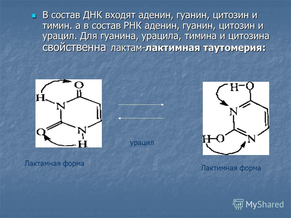 В состав ДНК входят аденин, гуанин, цитозин и тимин. а в состав РНК аденин, гуанин, цитозин и урацил. Для гуанина, урацила, тимина и цитозина свойственна лактам-лактимная таутомерия: В состав ДНК входят аденин, гуанин, цитозин и тимин. а в состав РНК