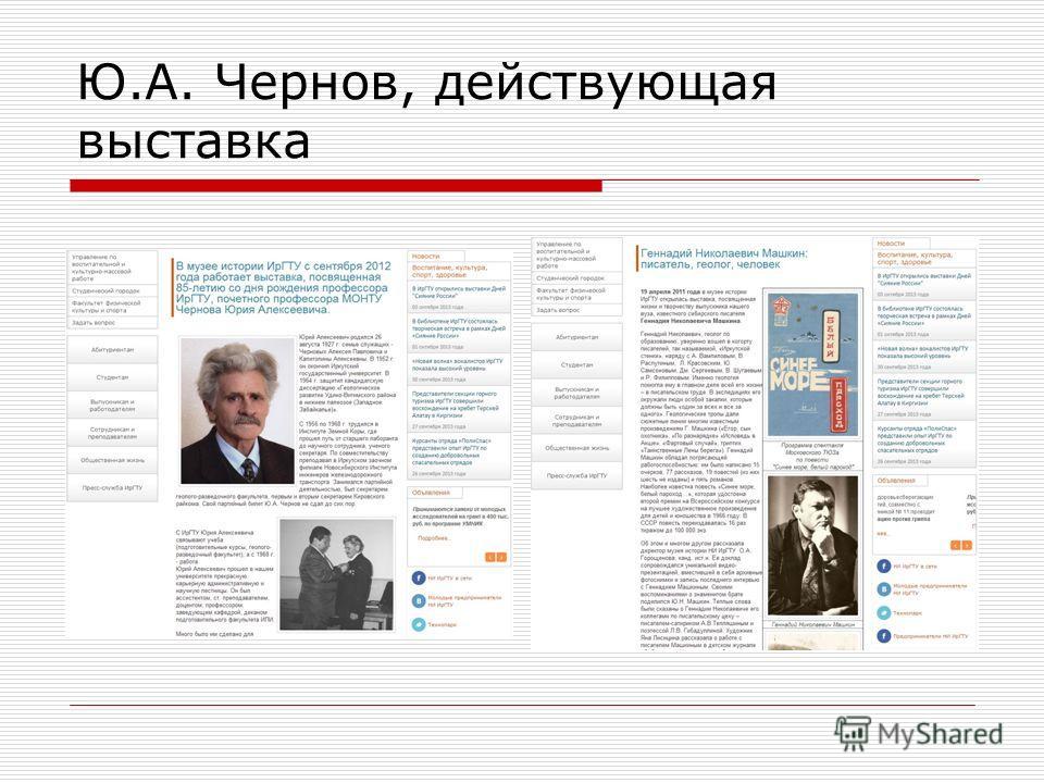 Ю.А. Чернов, действующая выставка