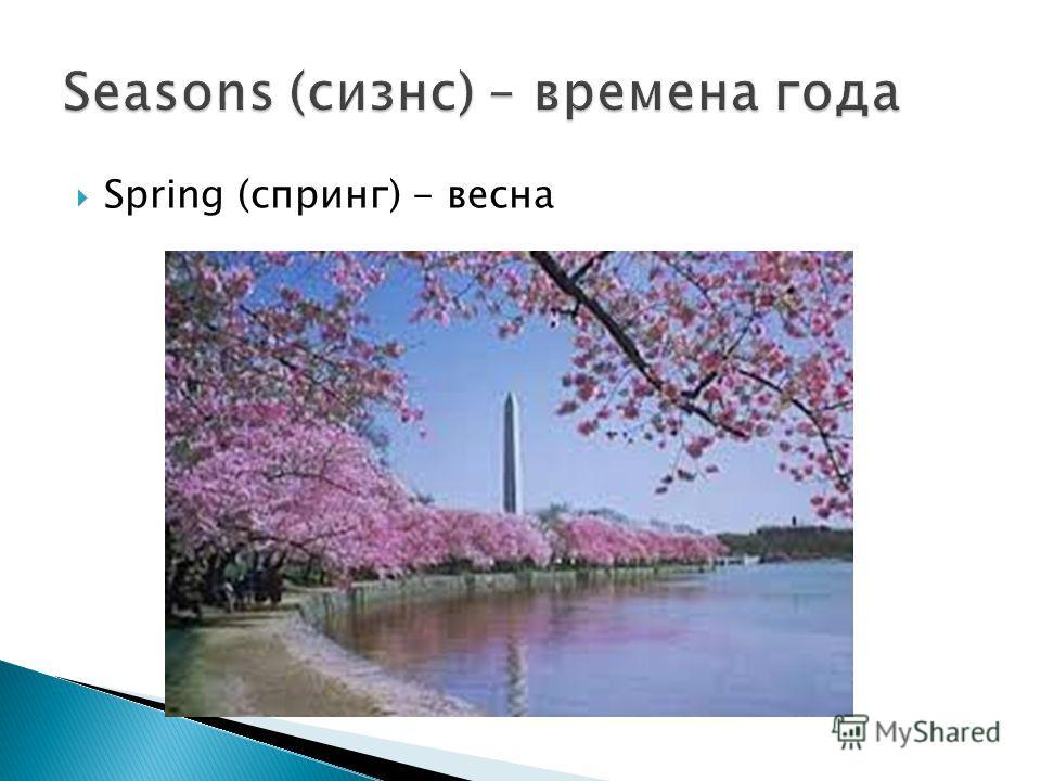 Spring (спринг) - весна