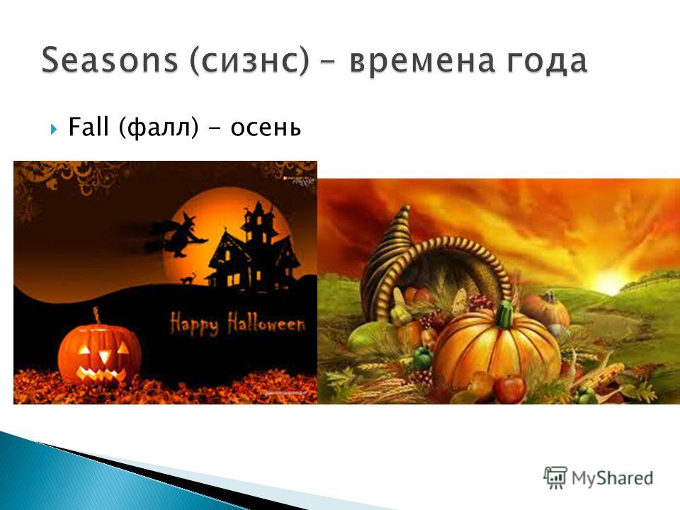 Fall (фалл) - осень