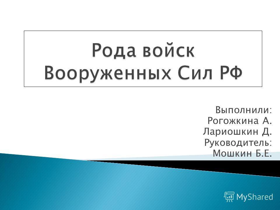 Выполнили: Рогожкина А. Лариошкин Д. Руководитель: Мошкин Б.Е.