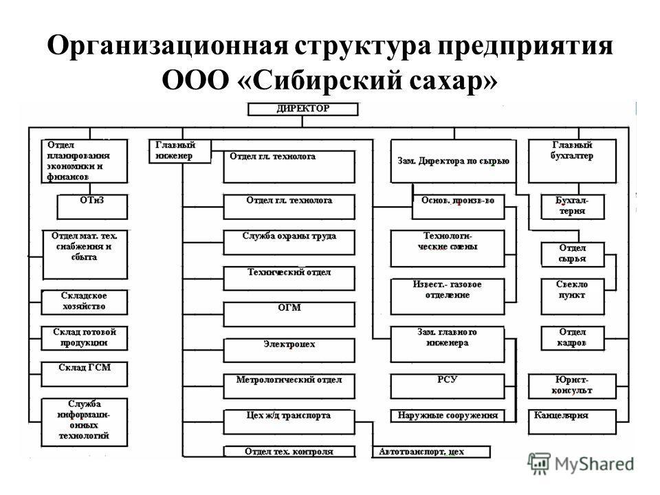 Организационная структура предприятия ООО «Сибирский сахар» 5
