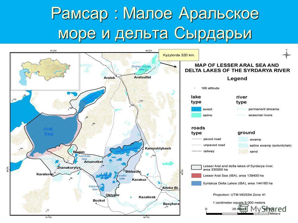 Рамсар : Малое Аральское море и дельта Сырдарьи
