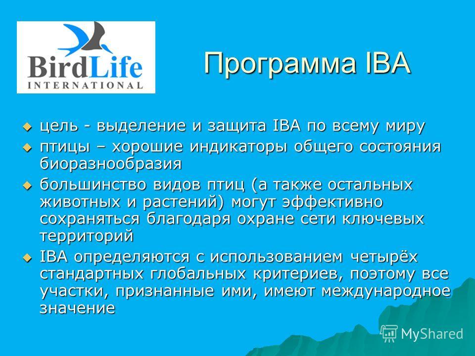 Программа IBA цель - выделение и защита IBA по всему миру цель - выделение и защита IBA по всему миру птицы – хорошие индикаторы общего состояния биоразнообразия птицы – хорошие индикаторы общего состояния биоразнообразия большинство видов птиц (а та