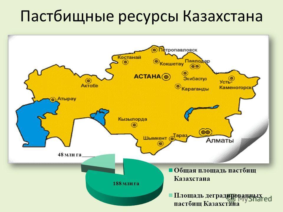 Пастбищные ресурсы Казахстана