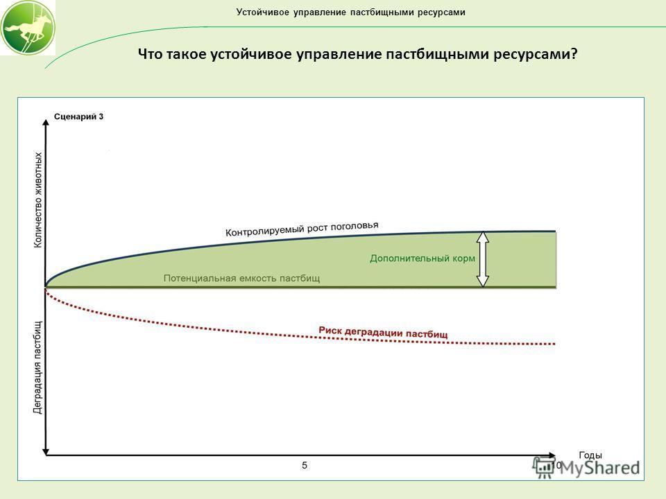 Устойчивое управление пастбищными ресурсами Что такое устойчивое управление пастбищными ресурсами?