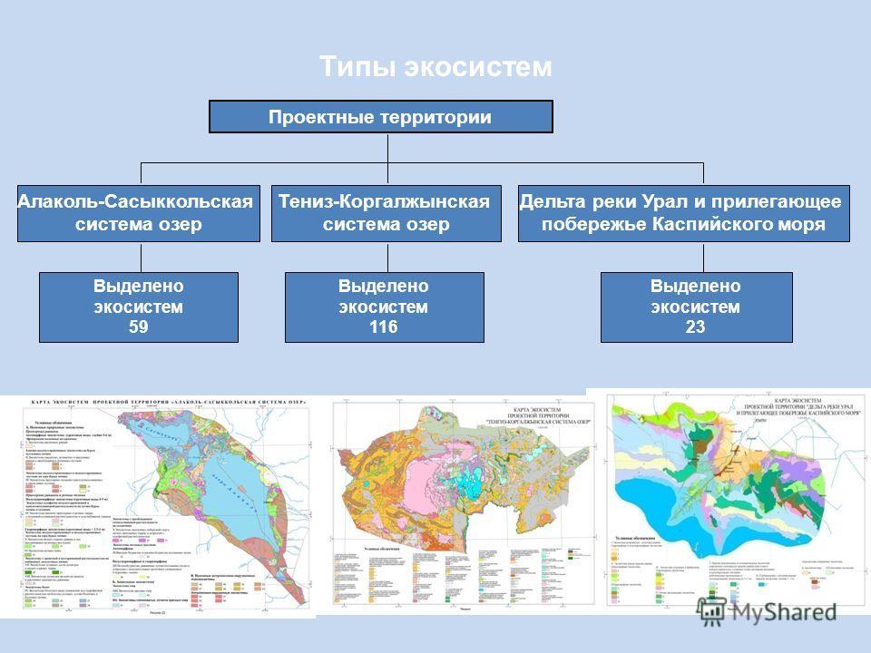 Типы экосистем Проектные территории Алаколь-Сасыккольская система озер Тениз-Коргалжынская система озер Дельта реки Урал и прилегающее побережье Каспийского моря Выделено экосистем 59 Выделено экосистем 116 Выделено экосистем 23