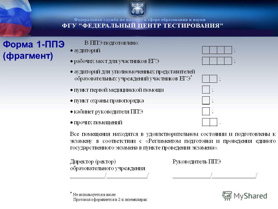 Форма 1-ППЭ (фрагмент)