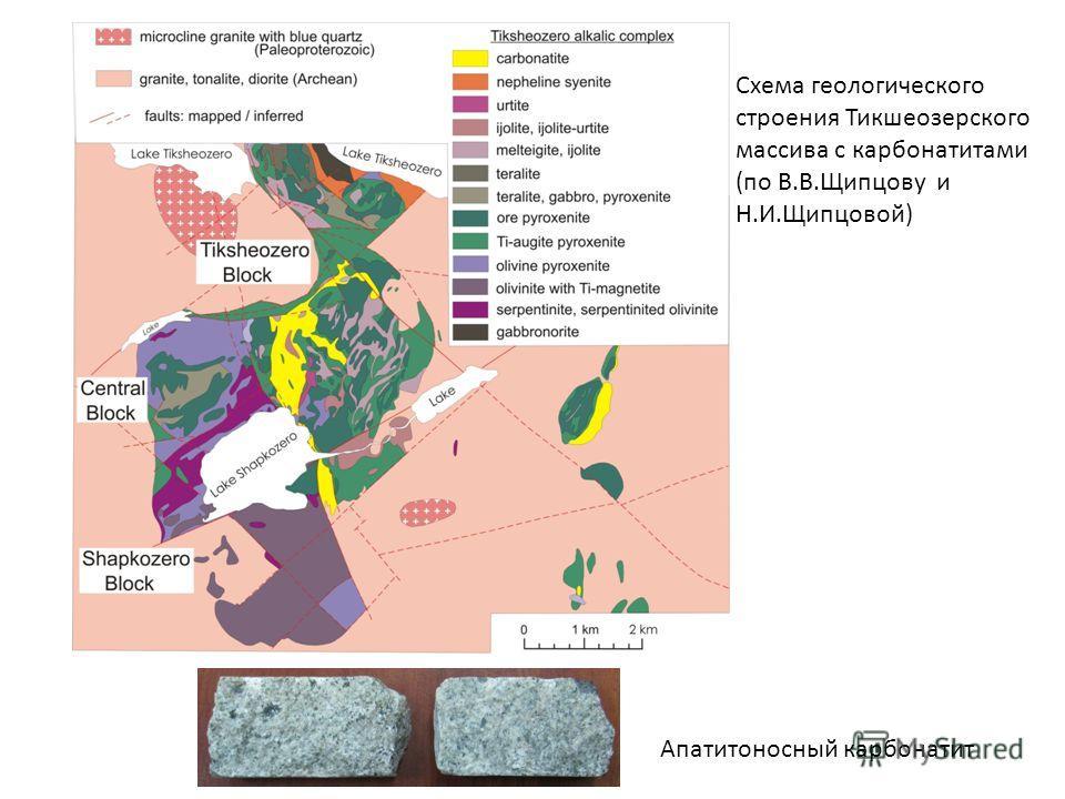 Схема геологического строения Тикшеозерского массива с карбонатитами (по В.В.Щипцову и Н.И.Щипцовой) Апатитоносный карбонатит