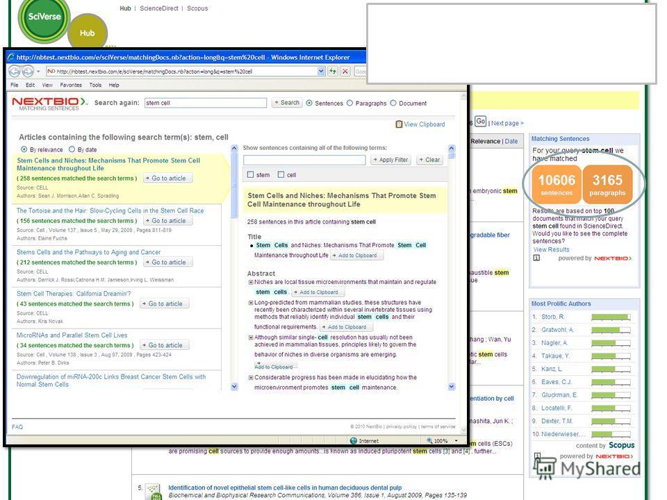 1. Приложение по соответствию в предложениях - результаты поиска представляют данные о поисковых словах в полном предложении
