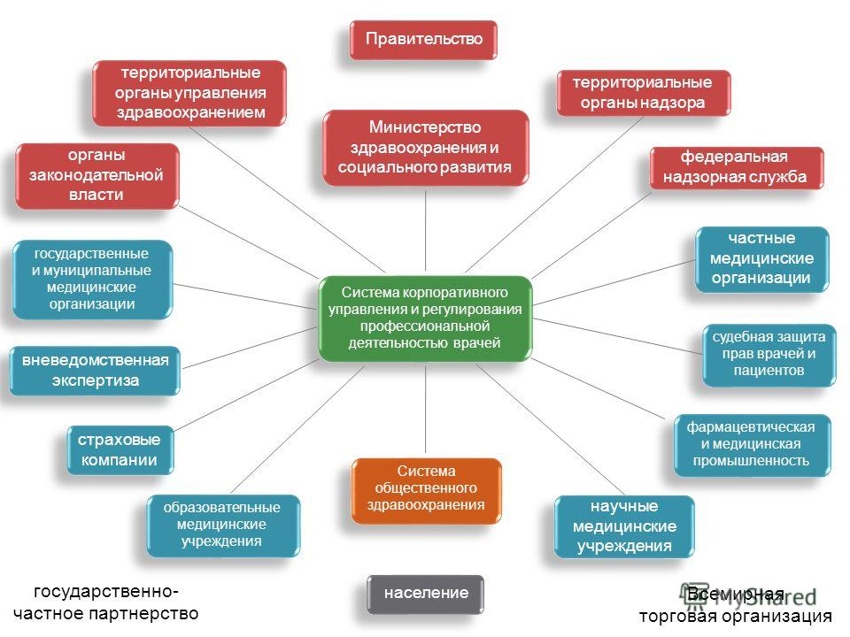 Правительство Система корпоративного управления и регулирования профессиональной деятельностью врачей население федеральная надзорная служба фармацевтическая и медицинская промышленность Всемирная торговая организация Система общественного здравоохра