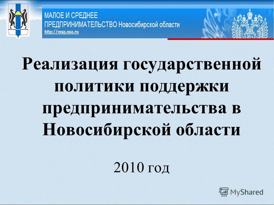 Реализация государственной политики поддержки предпринимательства в Новосибирской области 2010 год
