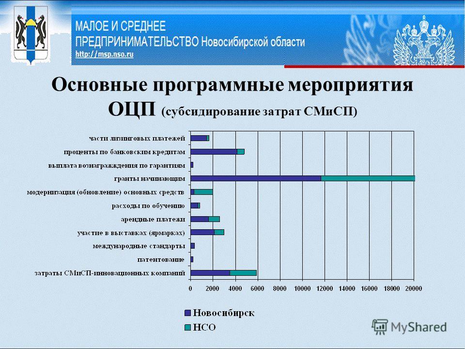 Основные программные мероприятия ОЦП (субсидирование затрат СМиСП)