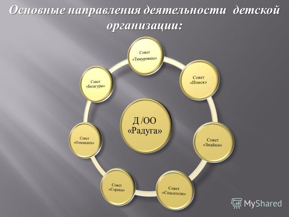 Основные направления деятельности детской организации :