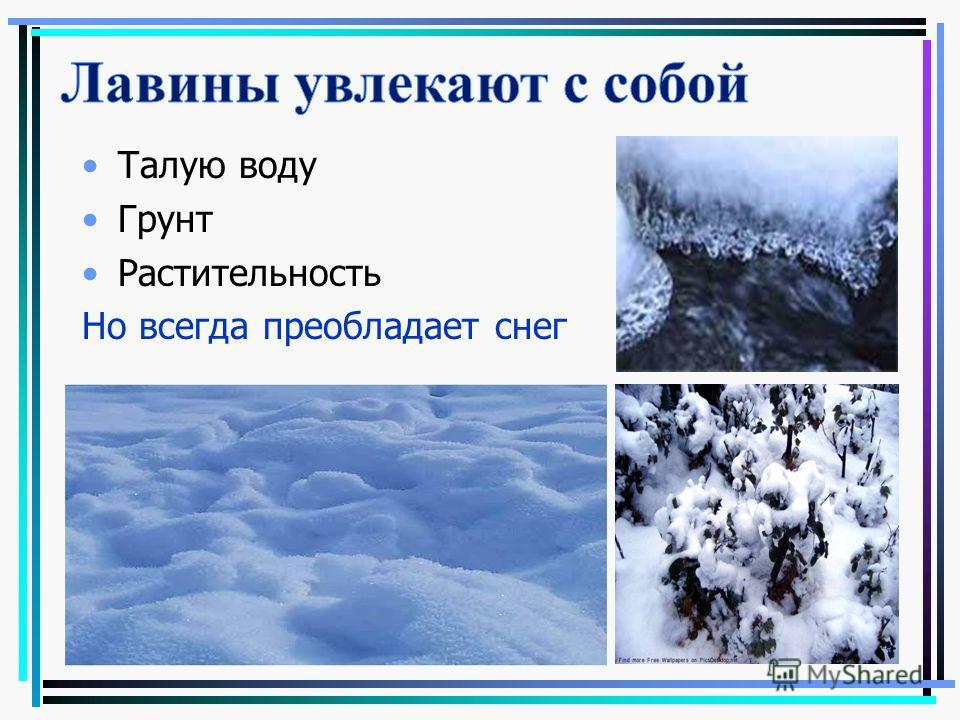 Талую воду Грунт Растительность Но всегда преобладает снег