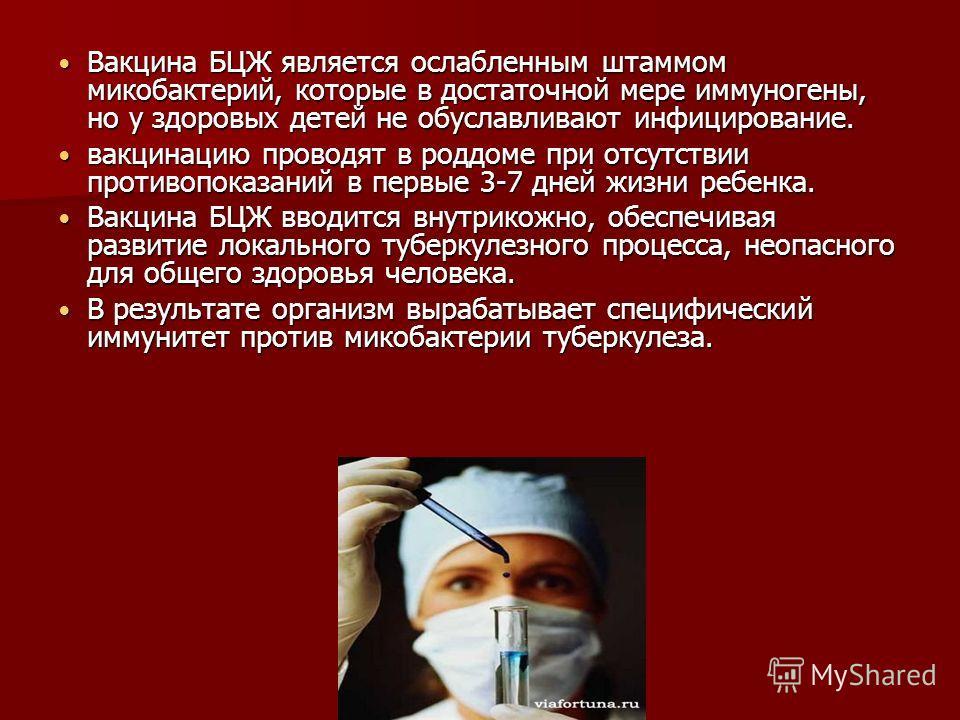 Вакцина БЦЖ является ослабленным штаммом микобактерий, которые в достаточной мере иммуногены, но у здоровых детей не обуславливают инфицирование. Вакцина БЦЖ является ослабленным штаммом микобактерий, которые в достаточной мере иммуногены, но у здоро