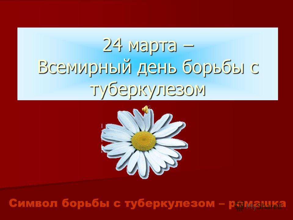 24 марта – Всемирный день борьбы с туберкулезом Символ борьбы с туберкулезом – ромашка