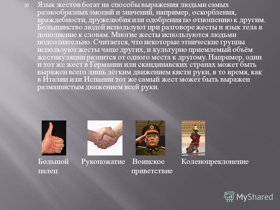 Язык жестов богат на способы выражения людьми самых разнообразных эмоций и значений, например, оскорбления, враждебности, дружелюбия или одобрения по отношению к другим. Большинство людей используют при разговоре жесты и язык тела в дополнение к слов